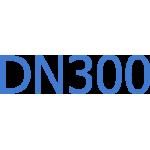 DN300